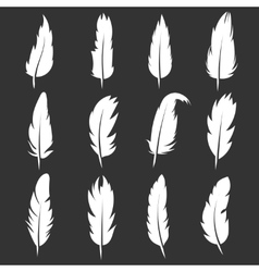 feather vintage pens on black background vector image