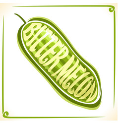 Logo for bitter melon vector