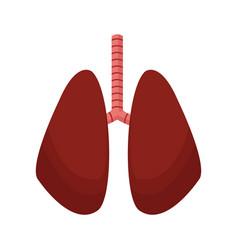 Lung human anatomical health image vector