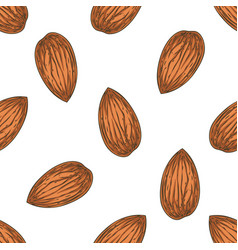 Shelled almond seamless pattern vector