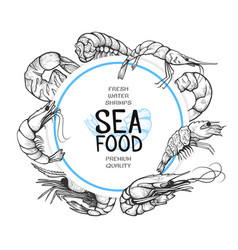 shrimp hand drawn sea food logo design vector image