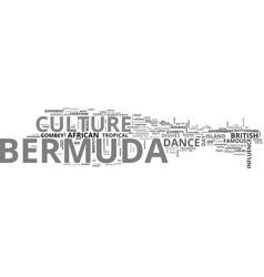 bermuda culture text word cloud concept vector image vector image