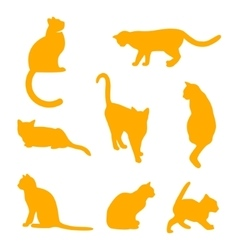 Set of cats Silhouettes on a white background vector image