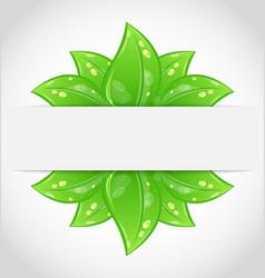 Bio concept design eco friendly banner vector image