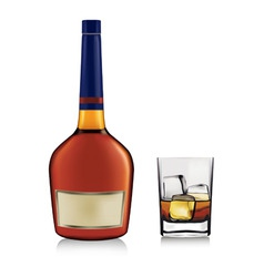 bottle and whiskey in glass vector image vector image