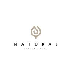 floral logo design templatecreative flower vector image