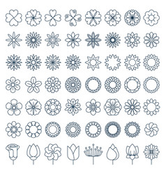 Flowers flat line icons beautiful garden plants vector