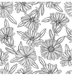 Hand drawn calendula medicinal herbs seamless vector