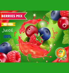mixed berries juice advertising package 3d design vector image