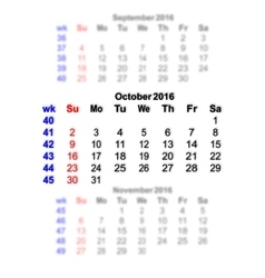 October 2016 Calendar week starts on Sunday vector image
