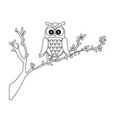 owl bird in branch vector image