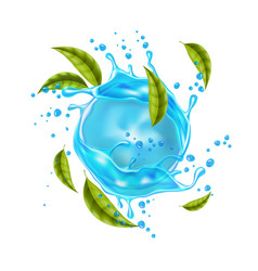 realistic blue water splash mint leaves vector image