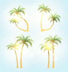 Set realistic trees with patches of sunlight vector