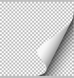 transparent paper with lower right curled corner vector image