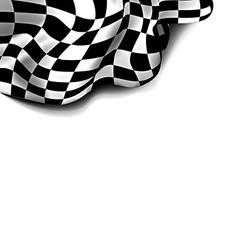 Flag Checkered vector image