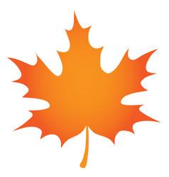 Orange maple leaf vector