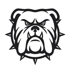 Bulldog head - angry vector