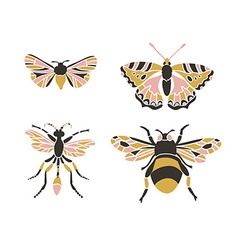 Bumblebee butterfly mol apanteles Insect icons set vector
