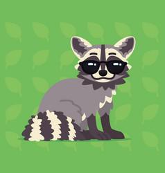 Cute raccoon sitting of a vector