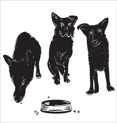 Dogs Near A Bowl vector image