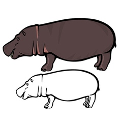 Hippo vector