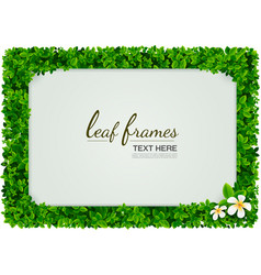 Leaf frames vector