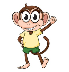 Monkey on a white background vector image