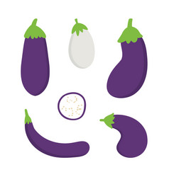 set collection eggplant aubergine vector image