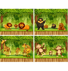 set of wild animal in forest vector image