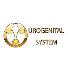 urogenital systemkidneys bladder emblemsymbol vector image