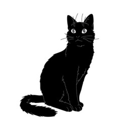 cute realistic cat sitting of vector image
