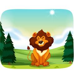 lion in nature landscape vector image
