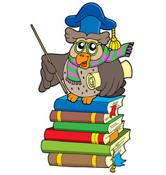 Owl teacher with parchment on books vector
