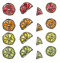 Seamless pattern of citrus lemon orange lime vector