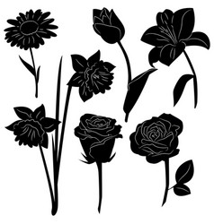 set black silhouettes flowers isolated vector image