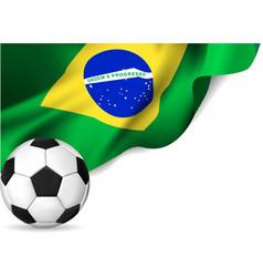 Brasil Flag soccer vector image vector image