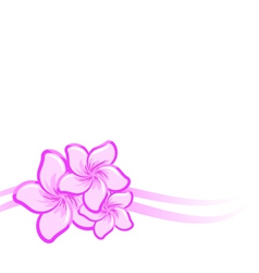 background with beautiful purple flowers vector image vector image