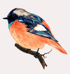 beautiful high detailed bird vector image