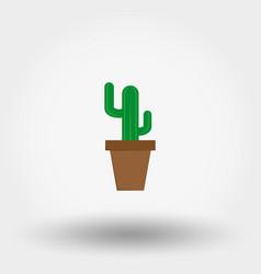 Cactus in a flowerpot indoor plant vector