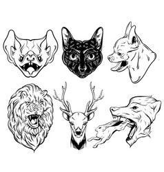 collection hand drawn realistic animals vector image