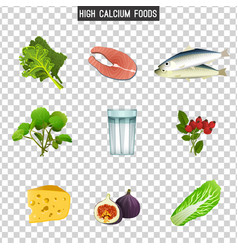 High calcium foods vector