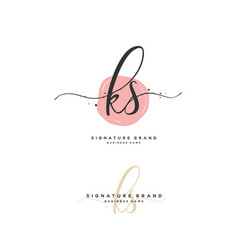 K s ks initial letter handwriting and signature vector