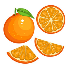orange with leaves whole and slices of oranges vector image