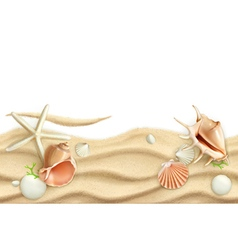 Seashells on sand background vector image