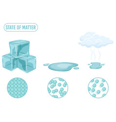 State matter vector