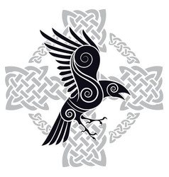 the raven of odin in a celtic style patterned vector image