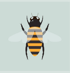 bee with wings vector image vector image