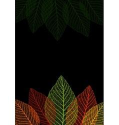 Skeleton leaf background vector