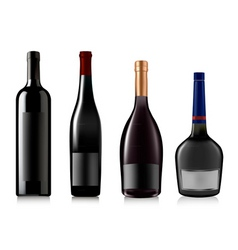 set of different bottles vect vector image
