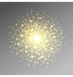 Firework salute magic light effect stars burst vector